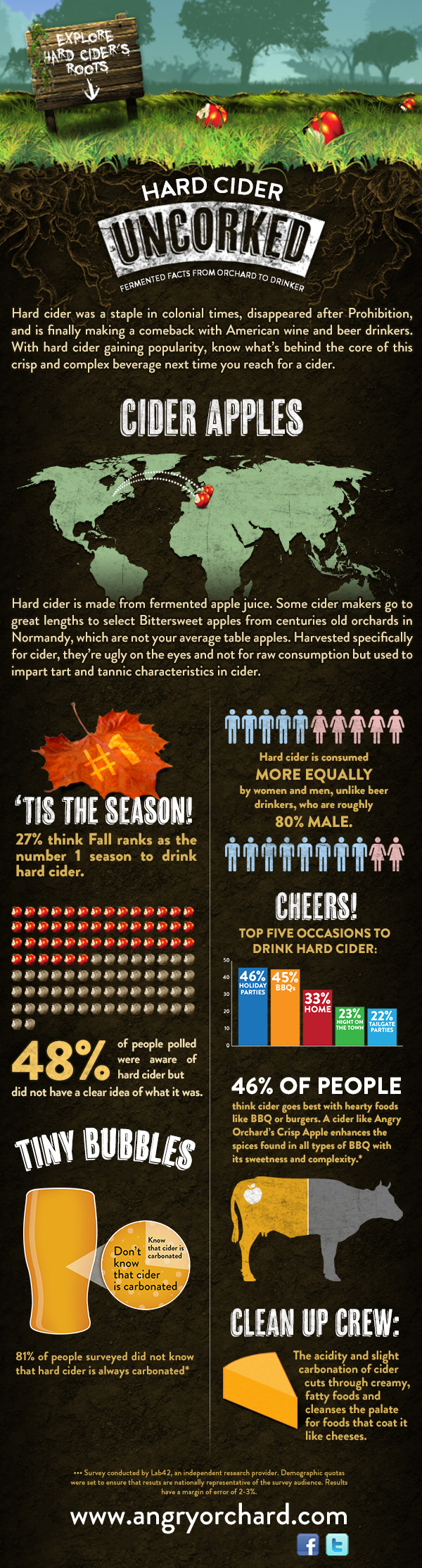 Cider Infographic